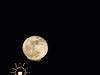 moon-jan-2-18_saulmon-4522.jpg