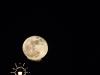 Moonrise over the Memorial Bridge, Springfield, Massachusetts
